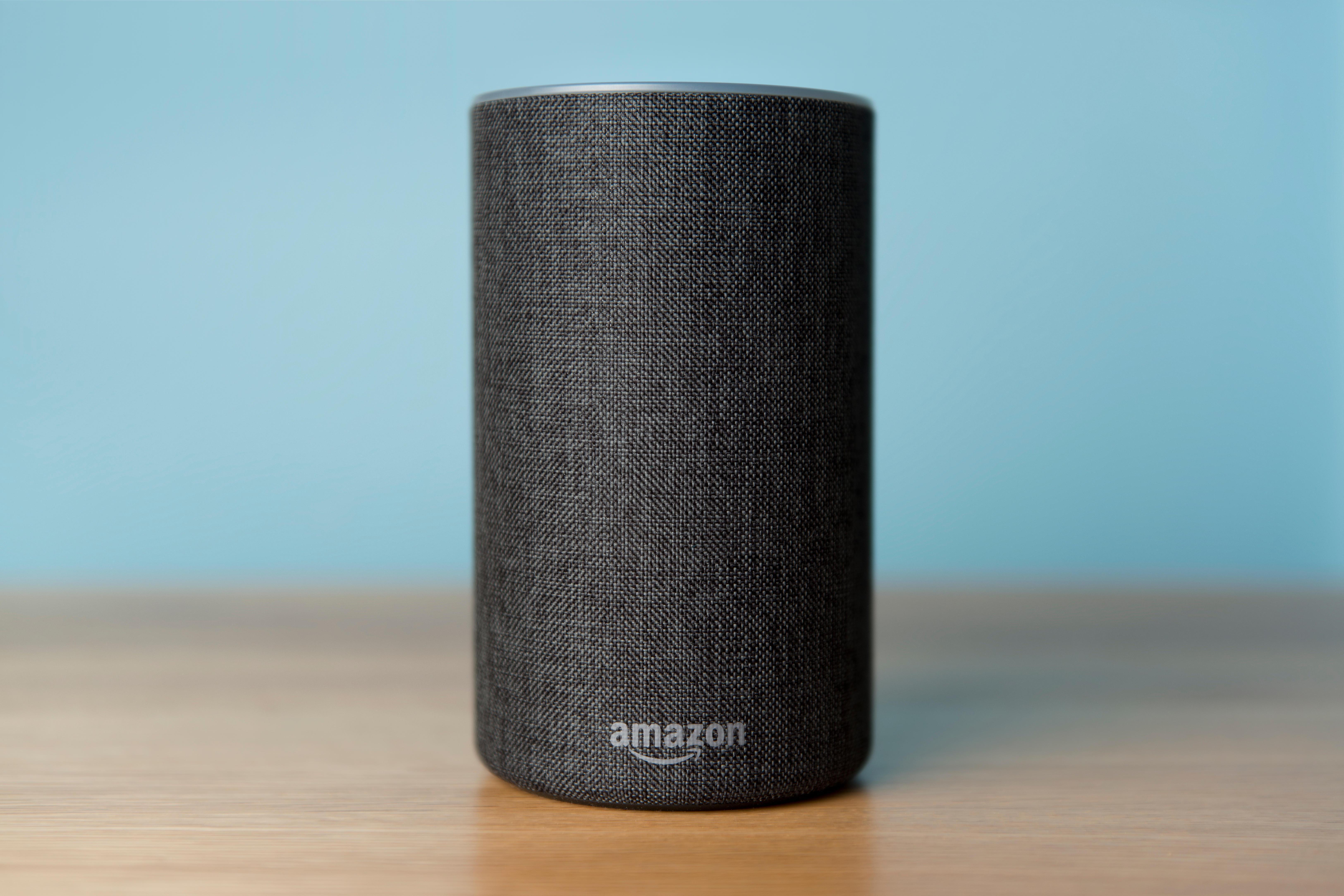 Amazonпопулярное эхо-устройство с поддержкой Alexa. По сообщениям, подростков на фабрике в Китае регулярно заставляют работать сверхурочно в нарушение трудового законодательства.