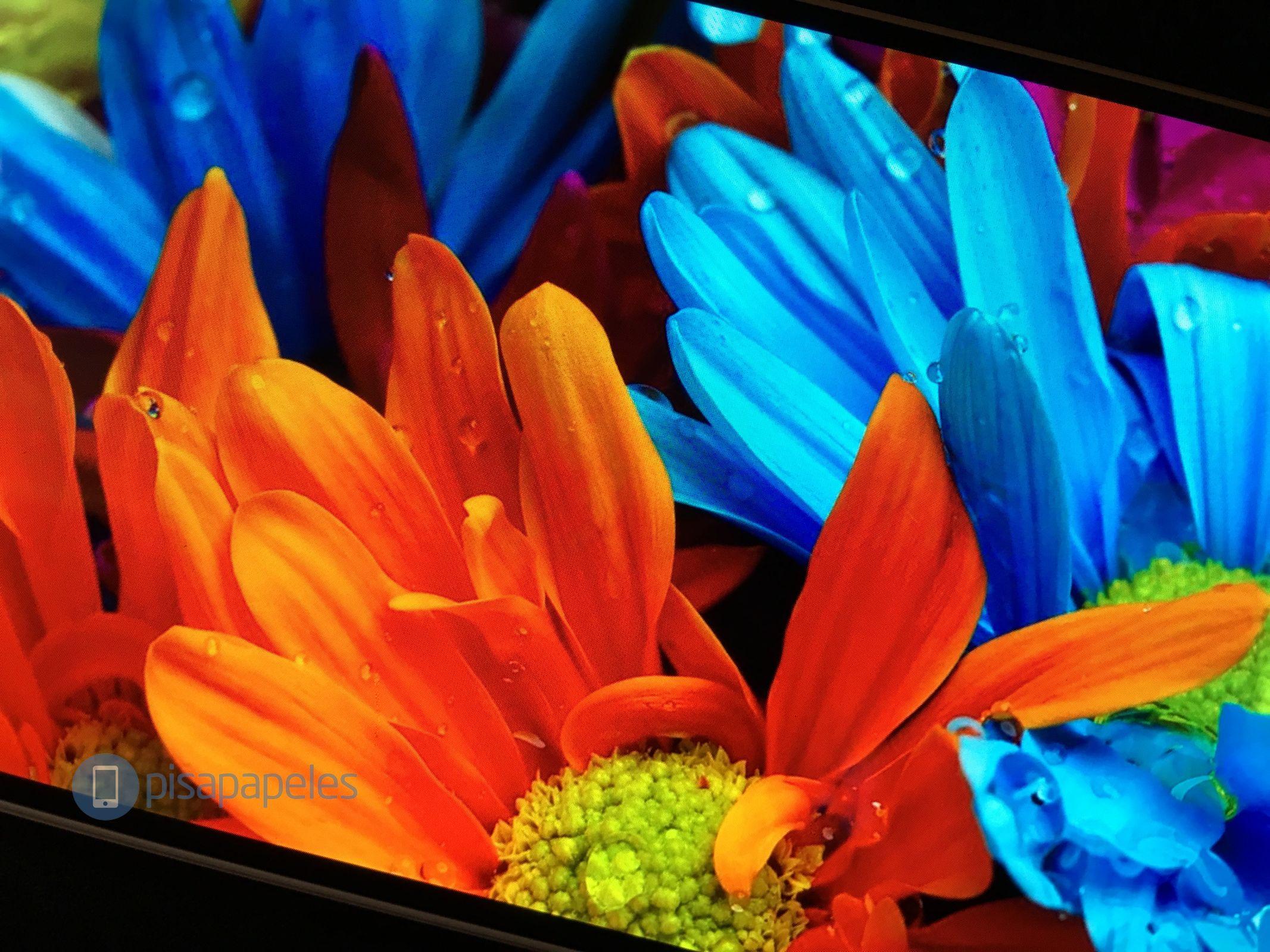 Huawei-P9-плюс-папье-net_4