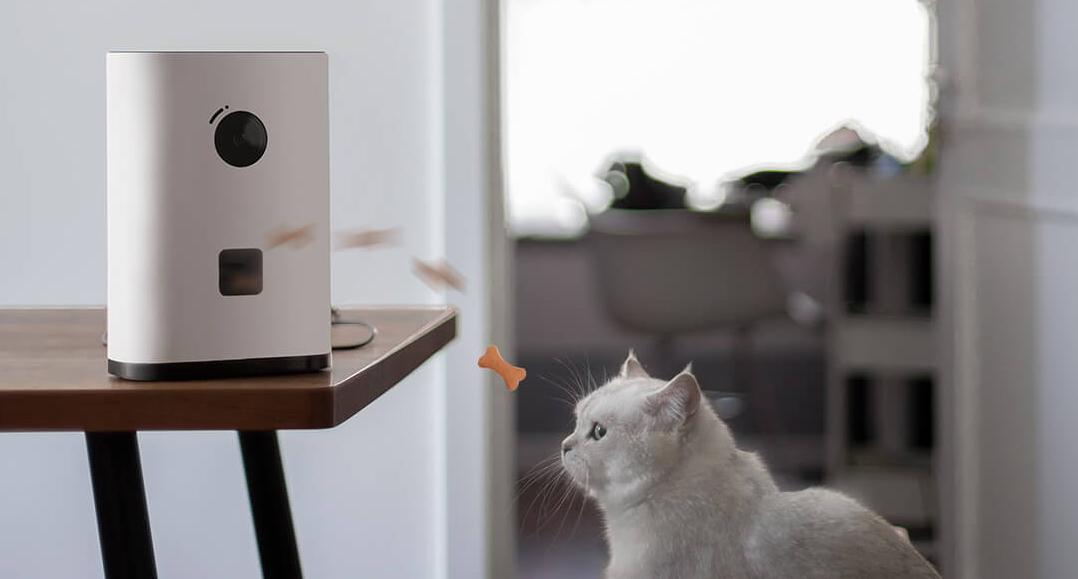 Xiaomi запускает в продажу новую камеру для наблюдения за домашними животными, оснащенную наградным диспенсером
