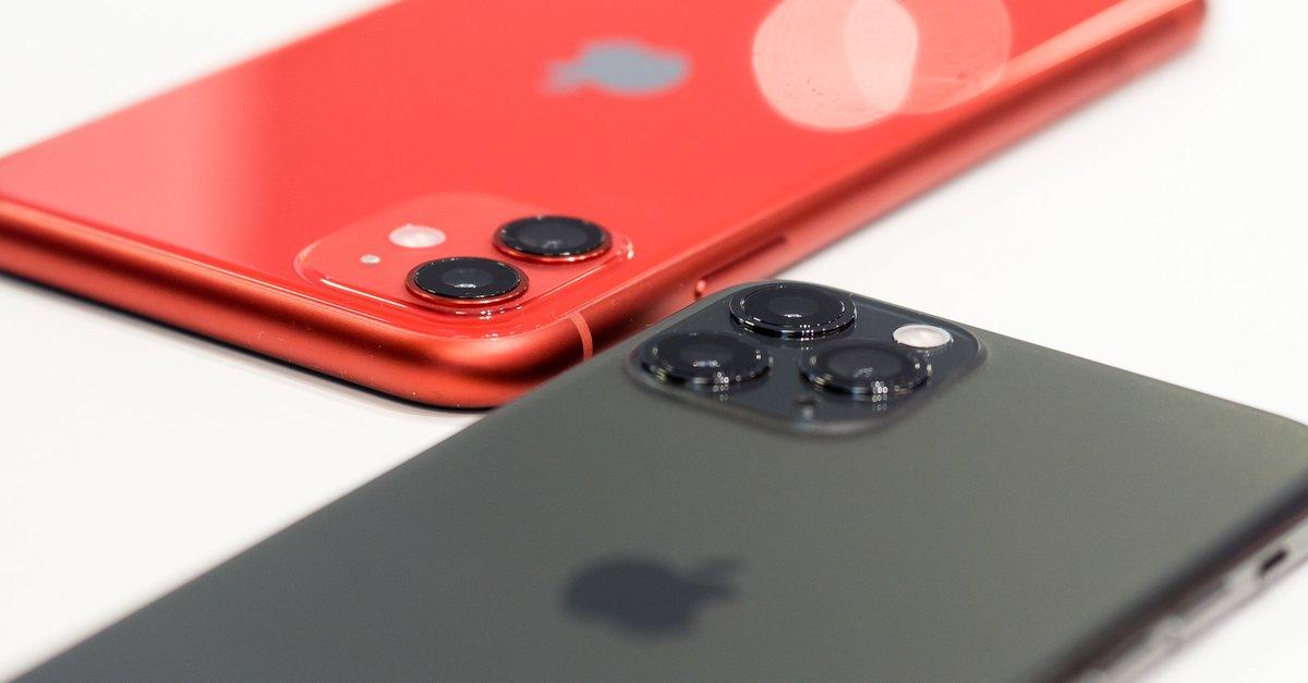 iPhone 11 и 11 Pro в картинках: это отличия